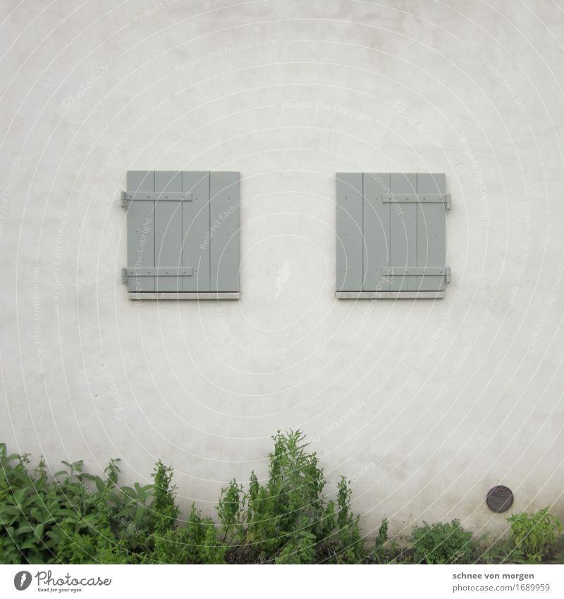 Symmetrische Geschlossenheit Umwelt Natur Pflanze Tier Gras Grünpflanze Nutzpflanze Dorf Stadt Menschenleer Haus Einfamilienhaus Bauwerk Gebäude Architektur