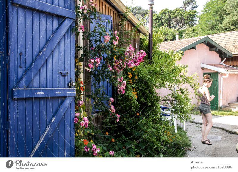 auf der Sonnenseite Mensch Ferien & Urlaub & Reisen Jugendliche blau Sommer grün Junge Frau Erholung 18-30 Jahre Erwachsene Blüte feminin Garten Freiheit rosa