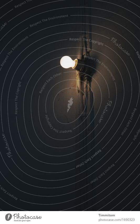 Etwas erleuchtet. Leuchtturm Mauer Wand leuchten dunkel braun grau weiß Glühbirne Kabel Zuleitung Schatten Lampenfassung Staub Farbfoto Innenaufnahme