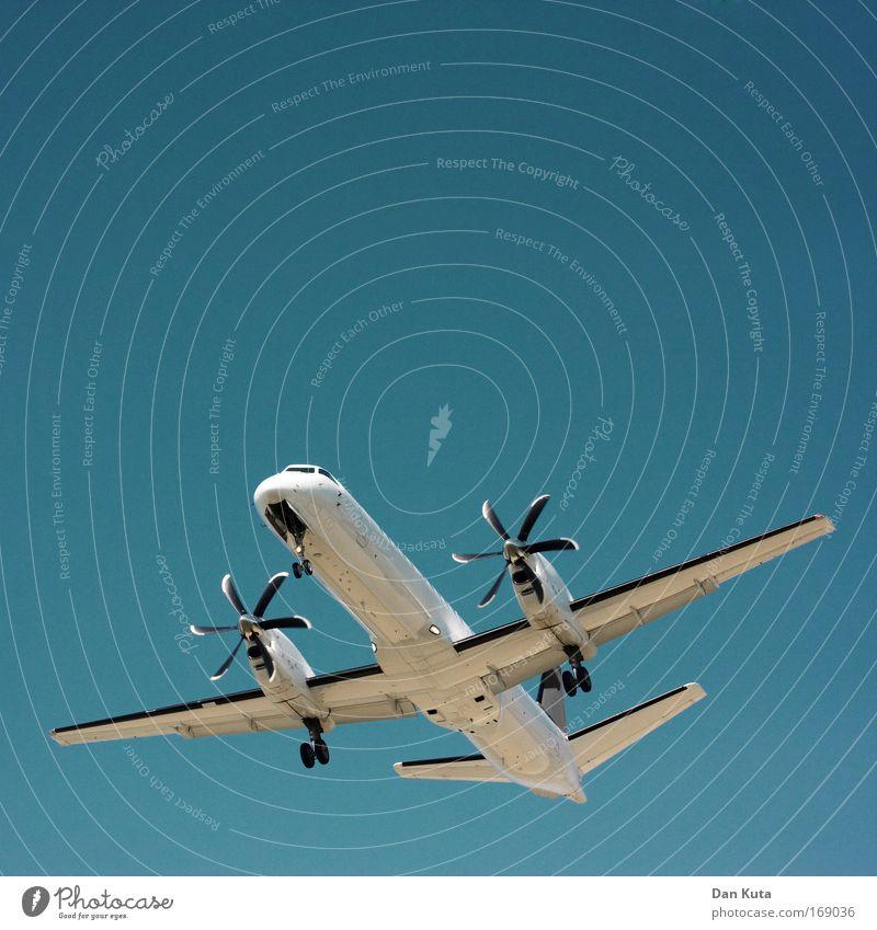 Urlaubsreif blau weiß Ferien & Urlaub & Reisen Sommer Freude träumen hell rosa fliegen Design Verkehr Flugzeug Luftverkehr Kommunizieren beobachten Neugier