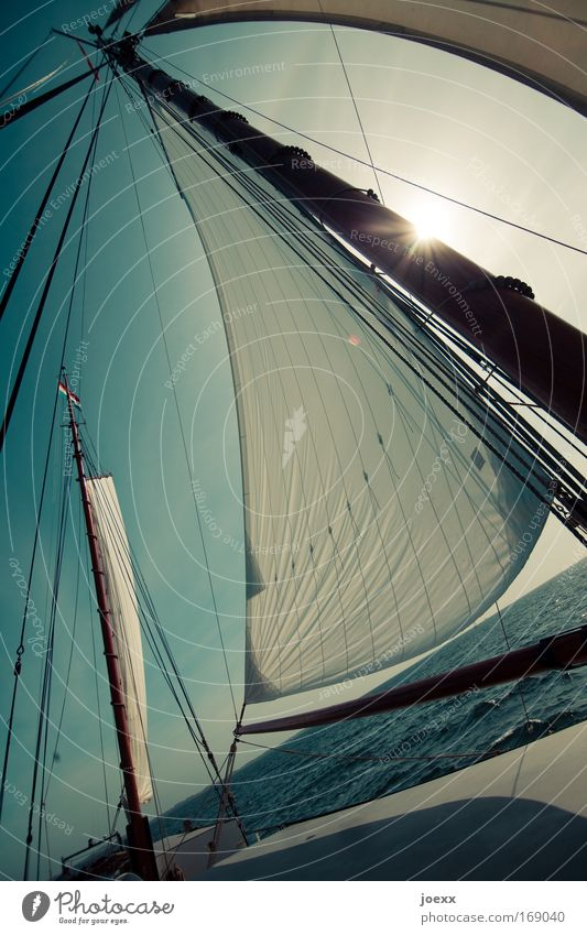 Sonnensegel Wasser Meer Freude Ferien & Urlaub & Reisen Ferne Freiheit Wellen Wind Erfolg Wasserfahrzeug Abenteuer Freizeit & Hobby Warmherzigkeit Dynamik