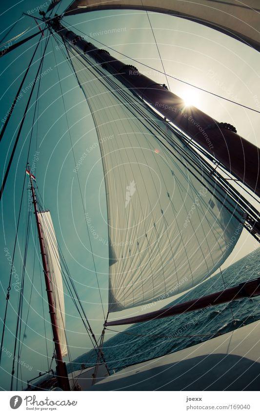 Sonnensegel Wasser Sonne Meer Freude Ferien & Urlaub & Reisen Ferne Freiheit Wellen Wind Erfolg Wasserfahrzeug Abenteuer Freizeit & Hobby Warmherzigkeit Dynamik Segeln