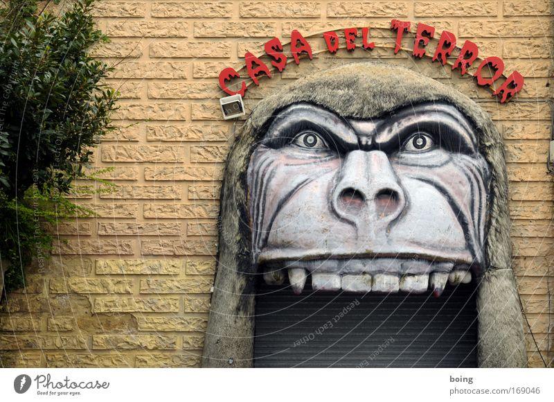 el rey del Congo Freude dunkel Wand Mauer Kopf Angst Tür Ernährung bedrohlich Neugier Show Wut Gebiss gruselig Jahrmarkt Tor