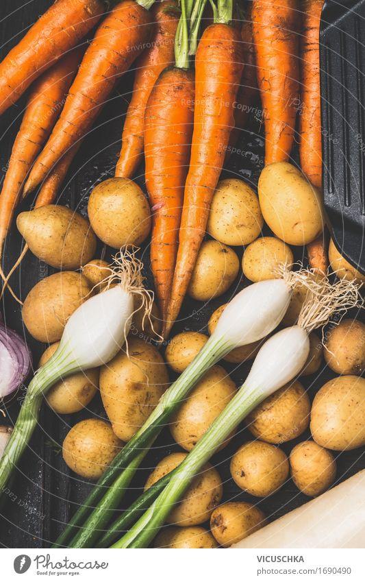 Gemüse aus dem Garten Lebensmittel Ernährung Slowfood Stil Gesunde Ernährung Sommer Natur Vegane Ernährung Bioprodukte Ernte Vegetarische Ernährung Herbst