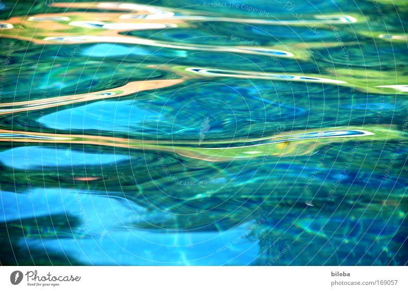 Kühles Nass für heisse Tage Natur blau grün Wasser Sommer Sonne Umwelt See hell Wellen Klima ästhetisch Schönes Wetter Urelemente Hoffnung Seeufer