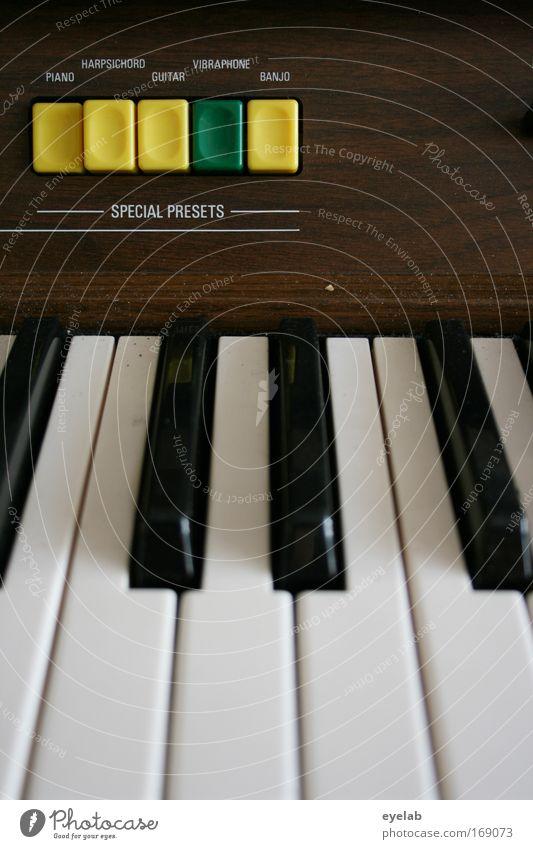 Technik ist keine Frage der Virtuosität Freude Holz Stimmung Freizeit & Hobby Musik Schriftzeichen Technik & Technologie Kunststoff Konzert Bühne Klaviatur