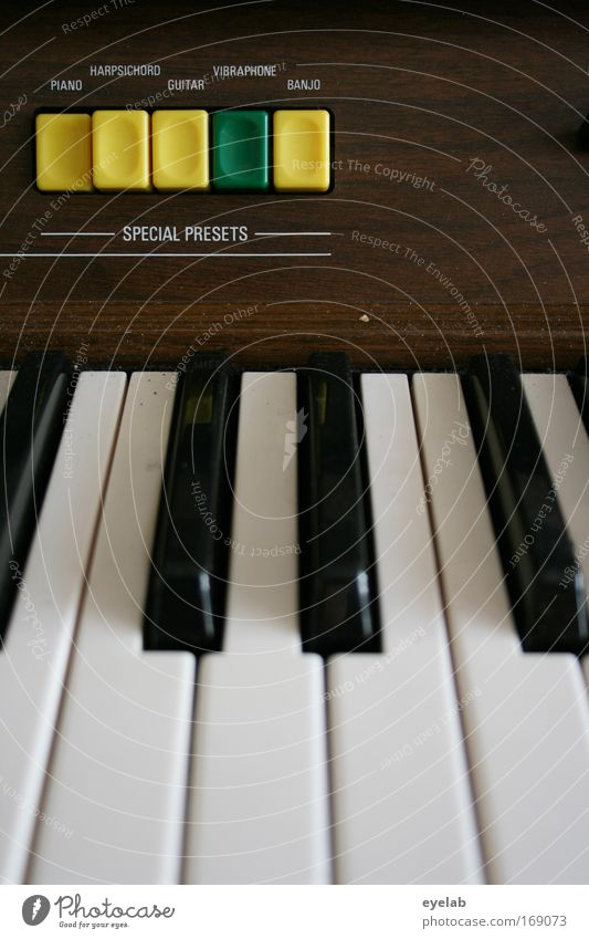 Technik ist keine Frage der Virtuosität Freude Holz Stimmung Freizeit & Hobby Musik Schriftzeichen Technik & Technologie Kunststoff Konzert Bühne Klaviatur Schalter Klavier Musiker üben Keyboard