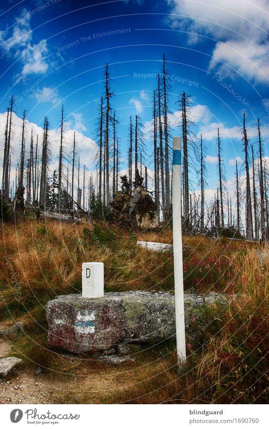 Across The Border Natur blau Pflanze Sommer weiß Baum Landschaft Wolken Wald schwarz Berge u. Gebirge Umwelt Gras Tod Freiheit Deutschland