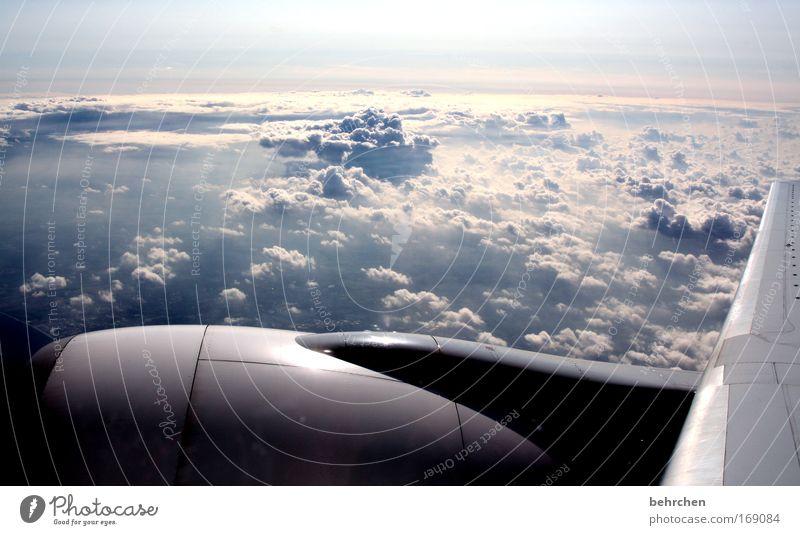 wer will mit? Himmel schön Ferien & Urlaub & Reisen Wolken Ferne Freiheit träumen Horizont Flugzeug fliegen Tourismus Tragfläche genießen Fernweh Licht staunen
