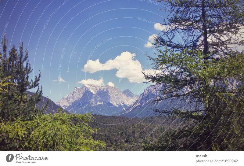 Ausblick Natur Landschaft Pflanze Himmel Wolken Sonne Sommer Hügel Berge u. Gebirge Schneebedeckte Gipfel Gletscher Stimmung Zugspitze Österreich