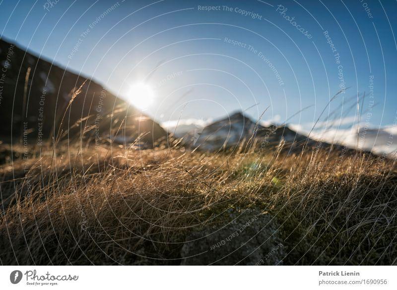 East Fjords Leben harmonisch Zufriedenheit Sinnesorgane Erholung Ferien & Urlaub & Reisen Abenteuer Sonne Insel Berge u. Gebirge wandern Umwelt Natur Landschaft