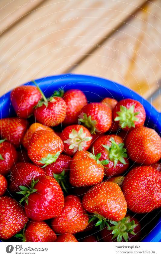 frisch gepflückte erdbeeren Farbfoto Außenaufnahme Textfreiraum oben Tag Starke Tiefenschärfe Vogelperspektive Lebensmittel Frucht Erdbeeren Ernte pflücken