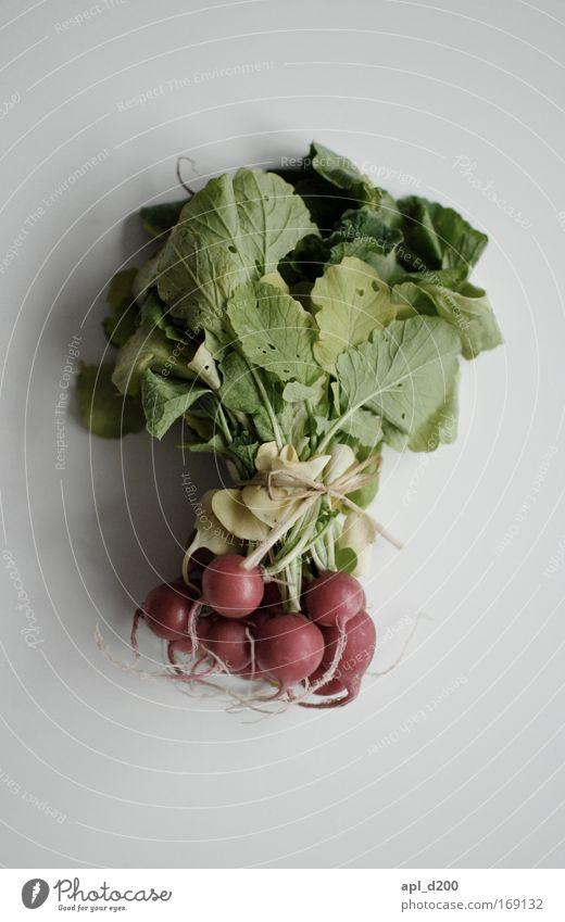 Radieschen von oben betrachten Natur grün rot Ernährung Gesundheit Lebensmittel Umwelt frisch ästhetisch liegen Gemüse Abendessen Mittagessen Bioprodukte
