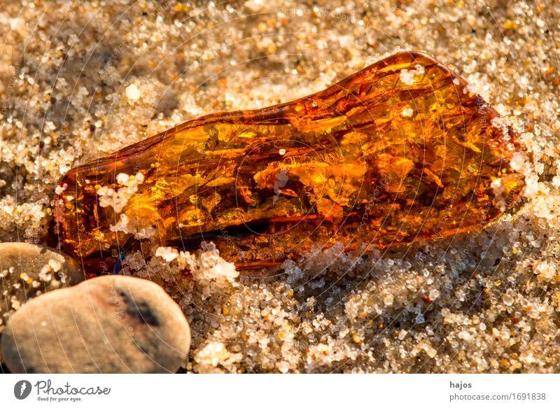 Bernstein am Ostseestrand Alternativmedizin Medikament Strand Sand Stein alt leuchten gelb Fund baltisch Baumharz strahlend Edelstein Halbedelstein Mineralien