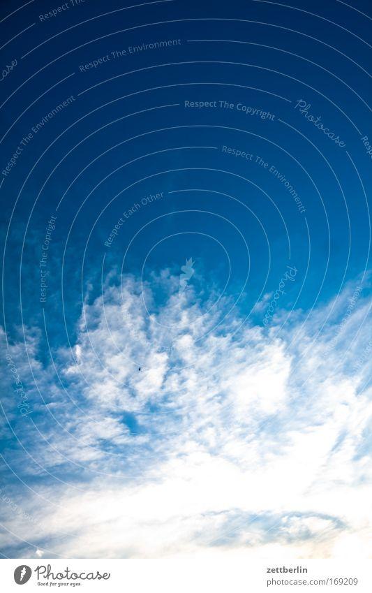 Wolken Himmel blau Weltall Blauer Himmel himmelblau Textfreiraum Meteorologie Cirrus Wetterdienst