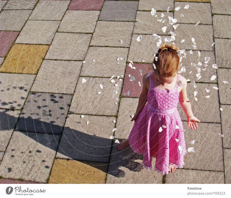Für mich solls weiße Rosen regnen II Mensch Kind weiß Mädchen Sommer Blume Wärme Blüte Stein hell Erde Kindheit blond rosa natürlich Rose