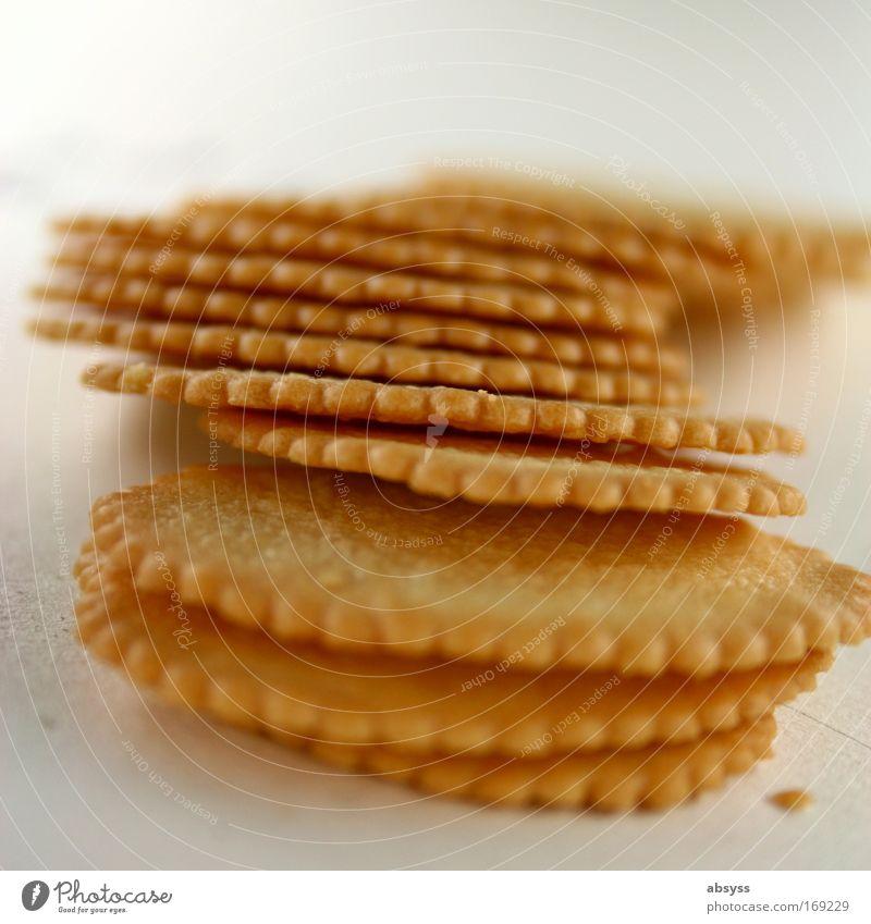 Kecksparty (cookie party) mehrfarbig Nahaufnahme Makroaufnahme Muster Strukturen & Formen Menschenleer Textfreiraum oben Hintergrund neutral Morgen Tag
