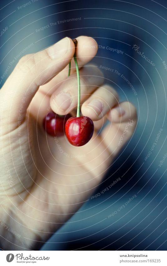 ein stück sommer Lebensmittel Frucht Ernährung Vegetarische Ernährung Haut Hand Finger Sommer berühren Essen genießen frisch lecker blau rot Gesundheit Kirsche