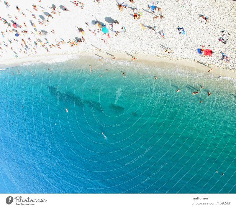 Platz an der Sonne Meer blau Sommer Strand Ferien & Urlaub & Reisen kalt Erholung Wärme Sand Küste Wellen nass Wellness Insel Tourismus Luftaufnahme
