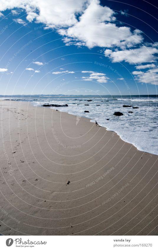 Jeffreys Bay Wasser Himmel Sonne Meer blau Sommer Strand Ferien & Urlaub & Reisen Wolken Ferne Wärme Sand Luft Wellen Küste Umwelt