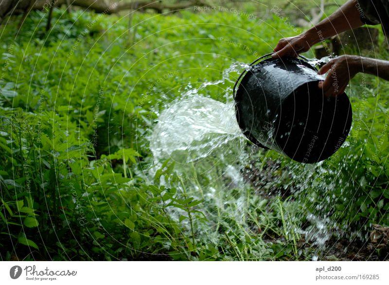 Wasser marsch Farbfoto Außenaufnahme Tag Schatten Zentralperspektive Mensch maskulin Arme Hand 1 Umwelt Natur Frühling Gras grün schwarz Freude Euphorie