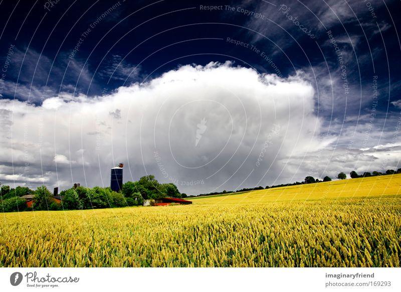 farmlandschaft Natur Himmel weiß grün blau Pflanze Sommer Wolken gelb Frühling grau Landschaft Feld Wind Wetter Sturm