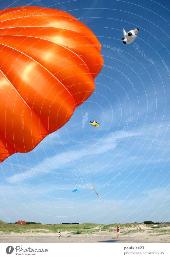 unterm Schirm Natur Himmel Sonne blau Sommer Freude Strand Ferien & Urlaub & Reisen Bewegung Sand Landschaft Küste Deutschland fliegen Horizont