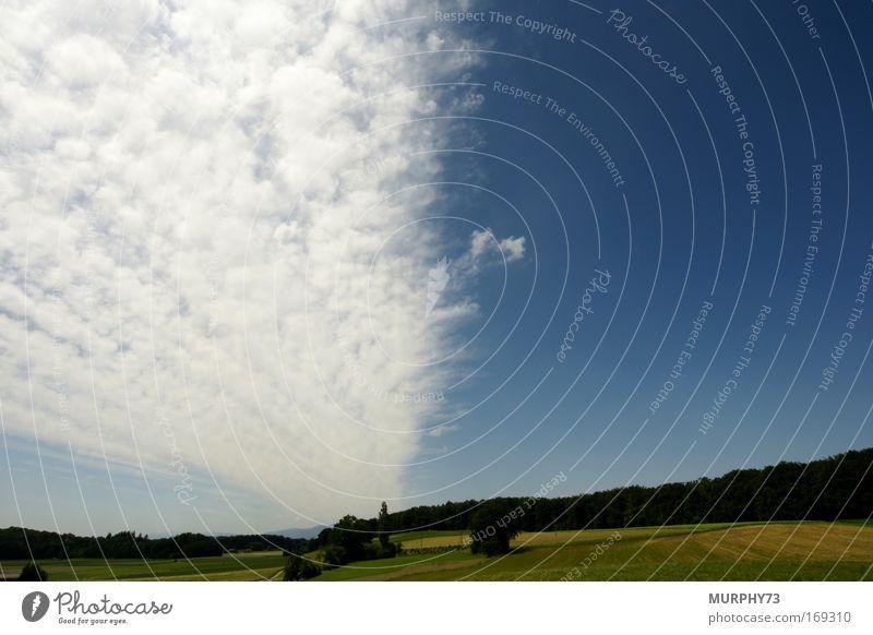 Ein Wolkenband zieht übers Land... Natur Himmel weiß grün blau Wald Frühling Landschaft Feld Umwelt Horizont Schönes Wetter himmelblau Wolkenloser Himmel