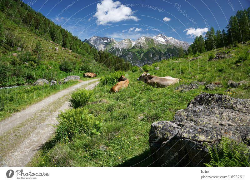 Malfonalm 1 Natur Ferien & Urlaub & Reisen Sommer Landschaft Erholung ruhig Ferne Berge u. Gebirge Umwelt Wege & Pfade Felsen Tourismus Zufriedenheit wandern