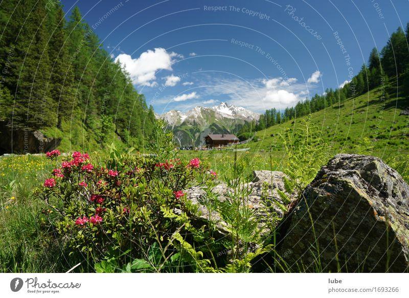 Malfonalm 2 harmonisch Wohlgefühl Zufriedenheit Erholung ruhig Ferien & Urlaub & Reisen Tourismus Freiheit Sommer Sommerurlaub Sonne Berge u. Gebirge wandern