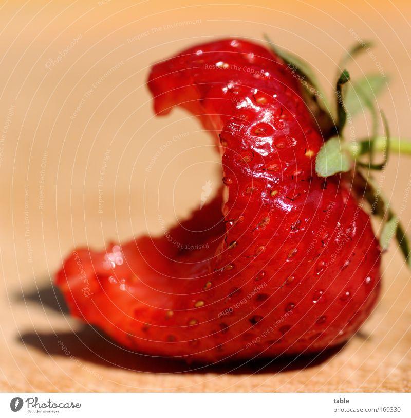Strawberry rot Pflanze Leben Gesundheit Kraft Frucht natürlich Lebensmittel Sträucher süß Schönes Wetter gut Sauberkeit genießen Gastronomie lecker