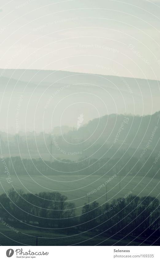 morgendlicher Nebel Farbfoto Außenaufnahme Menschenleer Textfreiraum oben Morgen Morgendämmerung Schatten Kontrast Ferien & Urlaub & Reisen Tourismus Ausflug