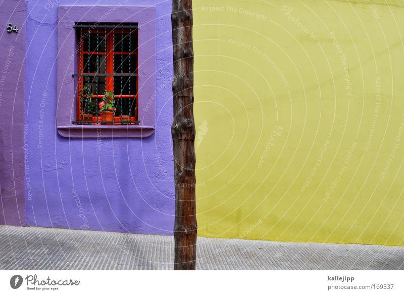 studio 54 Pflanze rot Ferien & Urlaub & Reisen Sommer Haus gelb Straße Fenster Wand Stil Wege & Pfade Mauer gold elegant Fassade Design