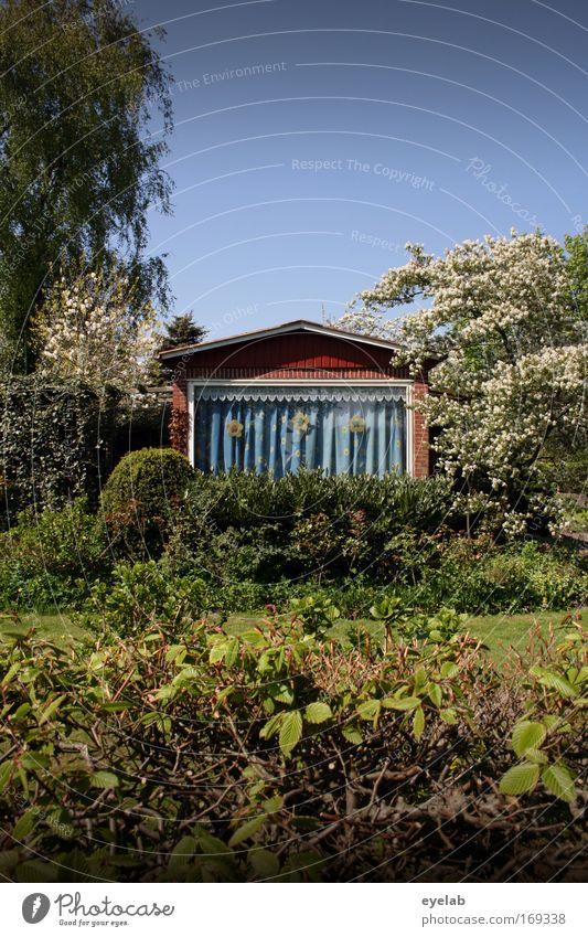 iDülle (Eppel™) Natur schön Pflanze Haus Fenster Blüte Garten Gebäude Architektur Wohnung klein verrückt Fassade einfach Kitsch Häusliches Leben