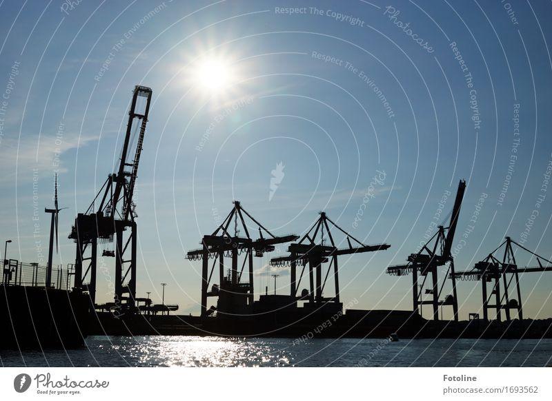 Hamburger Hafen Urelemente Wasser Himmel Wolkenloser Himmel Sonne Sonnenlicht Küste hell maritim nass Wärme blau schwarz weiß Kran Maschine Farbfoto