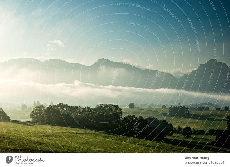 #317 / Morgennebel Himmel Natur Ferien & Urlaub & Reisen Landschaft Einsamkeit Berge u. Gebirge Umwelt Herbst Wiese Freiheit Tourismus Wetter Feld Nebel