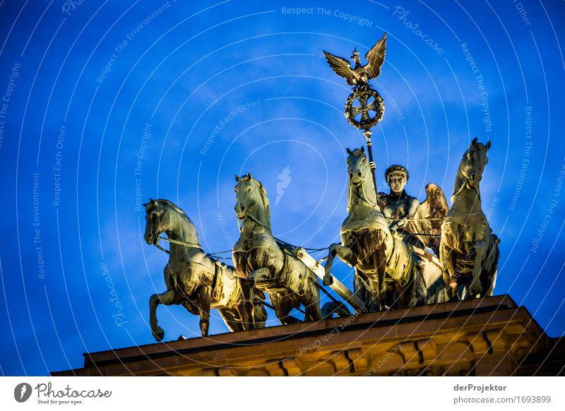 Gut ausgeleuchtet Ferien & Urlaub & Reisen Architektur Berlin Tourismus Kraft Ausflug authentisch Erfolg Macht Bauwerk Pferd Wahrzeichen Sehenswürdigkeit