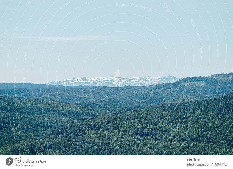 Around the World: Oslo around the world Ferien & Urlaub & Reisen Reisefotografie entdecken Tourismus Norwegen Berge u. Gebirge Wald Erholung Natur Landschaft