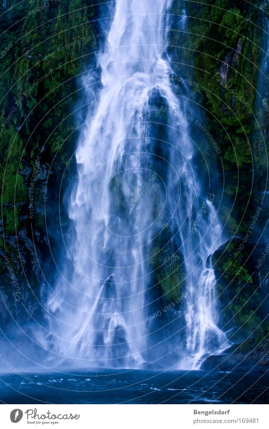 Bildkitsch Farbfoto Natur Pflanze Wasser Wassertropfen Wind Wasserfall Erholung Ferien & Urlaub & Reisen