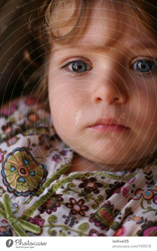 kleine träumerin Farbfoto Außenaufnahme Tag Sonnenlicht Porträt Oberkörper Vorderansicht Blick Blick nach vorn Mensch Kind Kleinkind Mädchen Kindheit Kopf