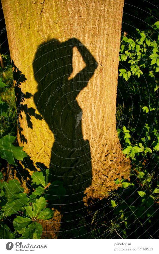 Lichtspiele Frau Mensch grün Baum Freude Erwachsene feminin Holz Park Freizeit & Hobby Sträucher Schönes Wetter Sonnenbad Junge Frau