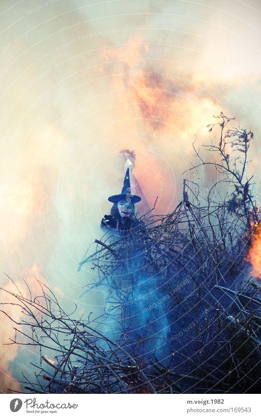 Es mussten wieder viele unschuldige Hexen sterben Mensch Erwachsene Holz Feuer Urelemente bedrohlich Ast Sachsen Rauch bizarr Geister u. Gespenster Flamme