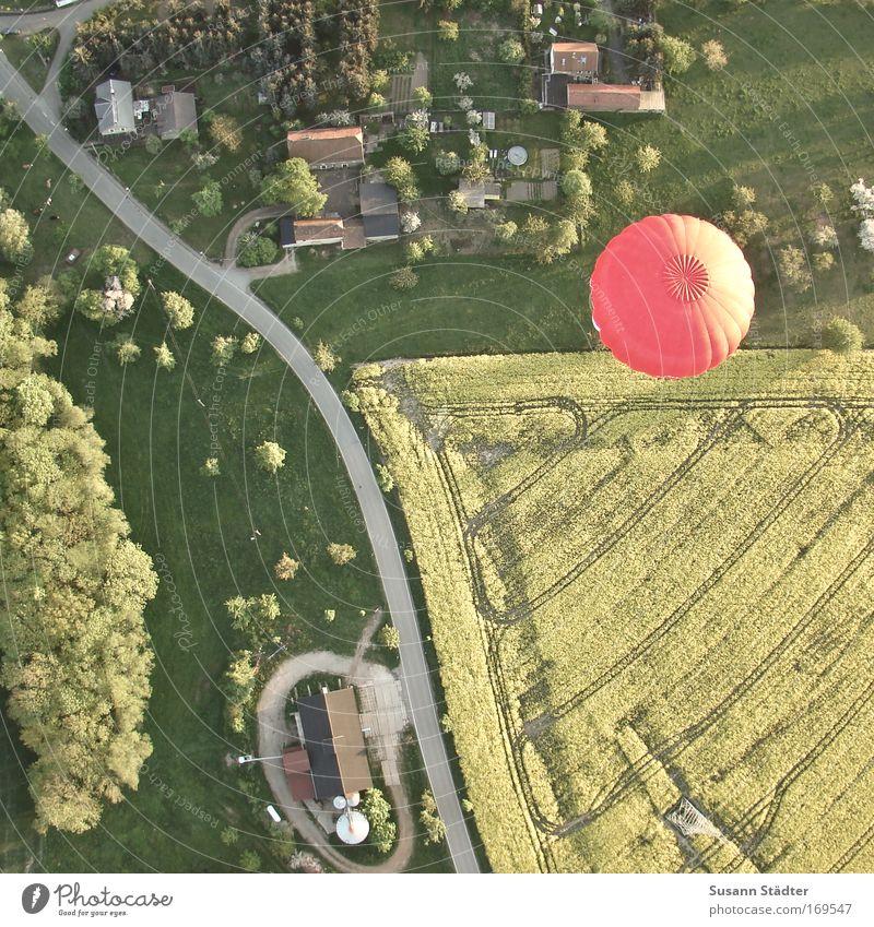 WochenendausFLUG Vogelperspektive Baum Pflanze Sommer Freude Ferien & Urlaub & Reisen Haus Luftaufnahme Ferne Wiese oben Gras Freiheit Landschaft Feld