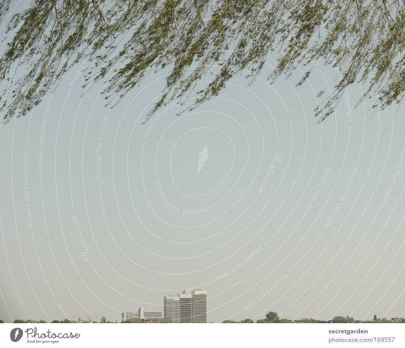 hamburg my love. Natur grün blau Sommer Ferien & Urlaub & Reisen Ferne Erholung Bewegung Freiheit grau Gebäude Architektur klein Wind elegant