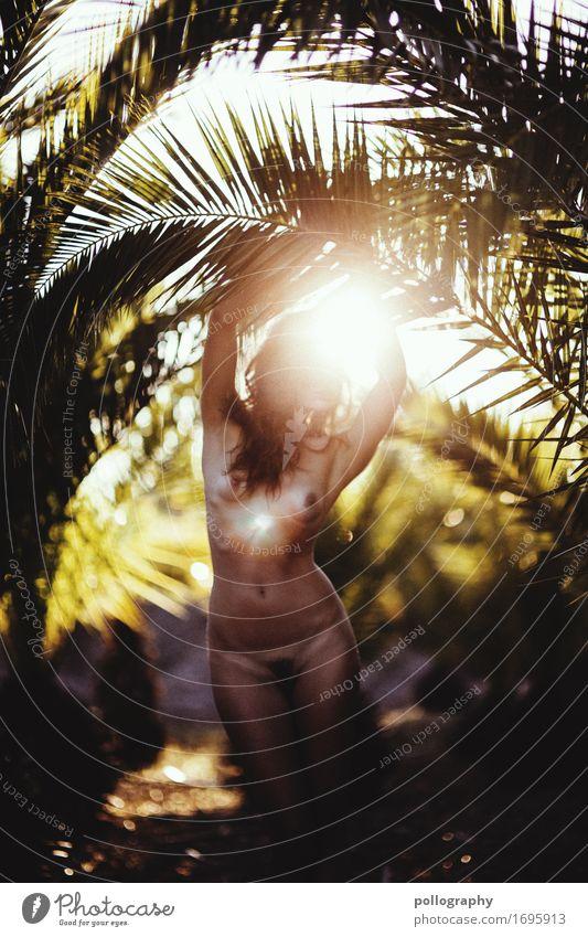 1000 <3 Mensch feminin Junge Frau Jugendliche Erwachsene Körper 18-30 Jahre Natur Landschaft Schönes Wetter Gefühle Abenteuer nackt Palme Romantik Erotik