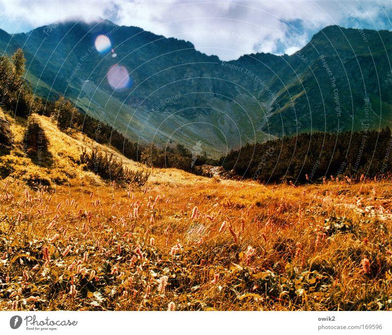 Bergwiese Himmel Natur Pflanze Ferien & Urlaub & Reisen Wolken Ferne Berge u. Gebirge Landschaft Umwelt Gras Luft Erde Horizont Ausflug groß Tourismus