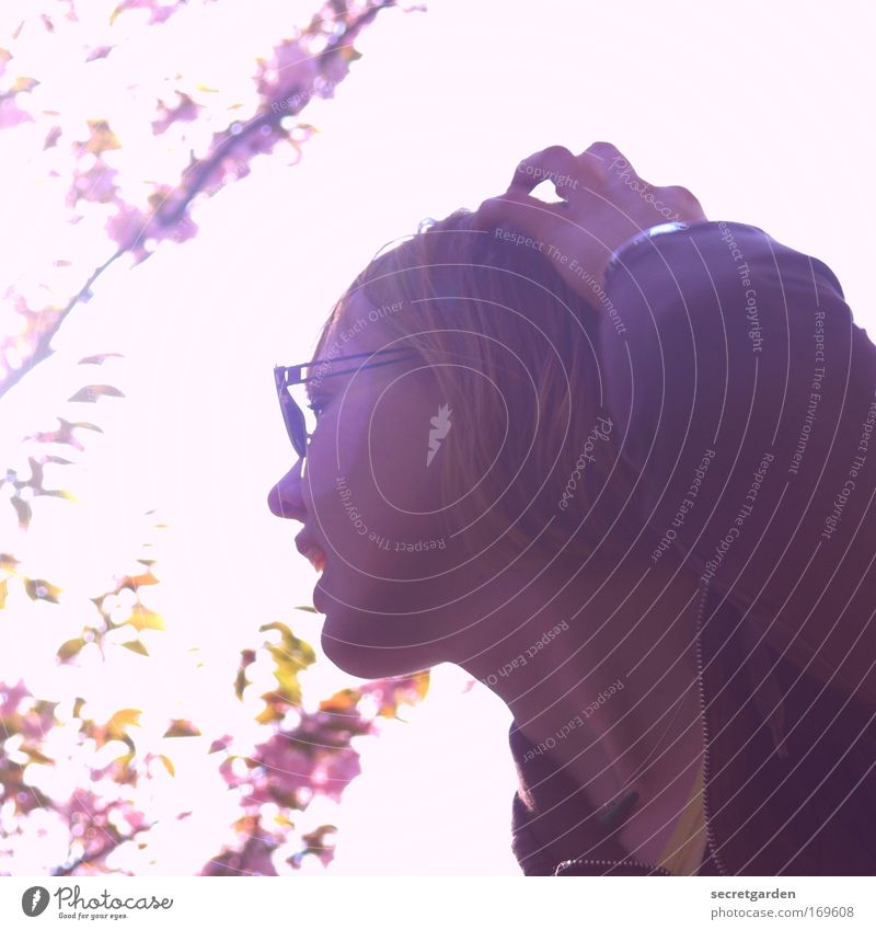 hamburgs next topmodel. Farbfoto Außenaufnahme Nahaufnahme Experiment Textfreiraum links Hintergrund neutral Tag Sonnenlicht Gegenlicht Schwache Tiefenschärfe