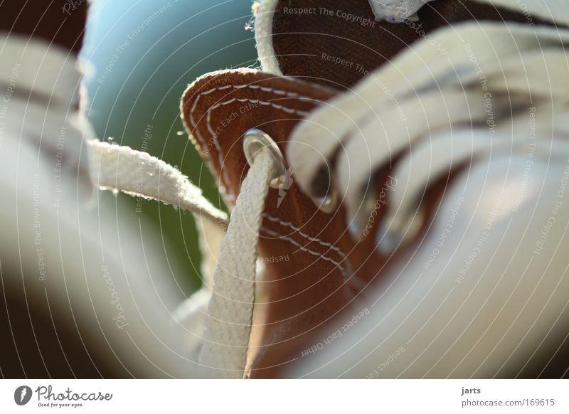 step by step Farbfoto Außenaufnahme Menschenleer Textfreiraum unten Tag Sonnenlicht Starke Tiefenschärfe Froschperspektive Stil Design Mode Schuhe Turnschuh