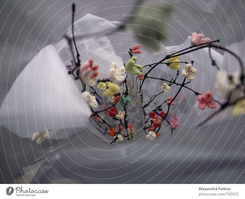 Stoff in Tüten Farbfoto Nahaufnahme Makroaufnahme Schwache Tiefenschärfe Dekoration & Verzierung ästhetisch schön Stoffblüten Plastiktüte Zweige u. Äste