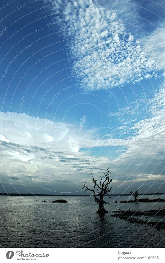 Ursprung Himmel Natur Wasser Pflanze Meer Wolken Landschaft Ferne Umwelt Freiheit Erde Horizont Urelemente Ende Klimawandel malerisch